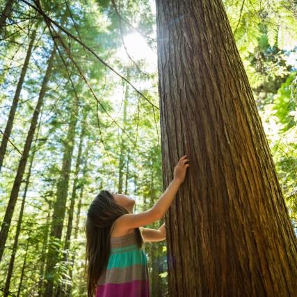 Mädchen bewundert Baum